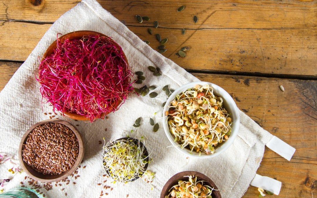 Mit diesen Lebensmitteln kannst du deinen Östrogenwert steigern!