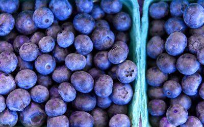 Superfoods: Welche regionalen Lebensmittel können mithalten?