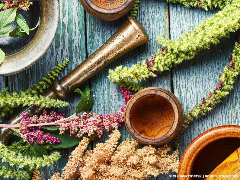Pflanzenheilkunde bei Harnwegsinfekten